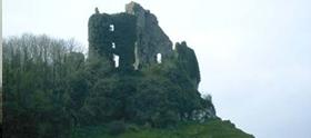 Carrigogunnell Castle Clarina Limerick